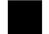 logo1 adi